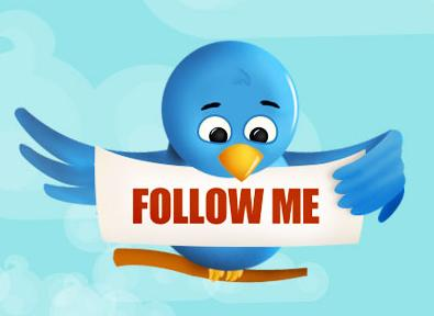 twitter_bird_follow_me2