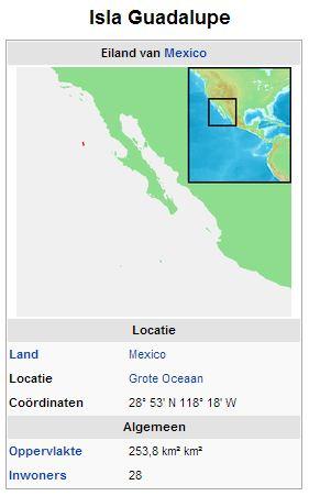 Wiki plaatje Isla Guadalupe